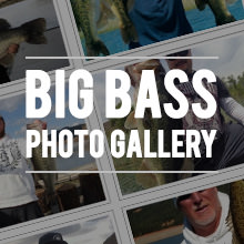 big bass photos